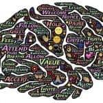 hersenen met woorden erin die de verschillende functiegebieden aanduiden